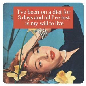 I've Been On A Diet For 3 Days And All... funny steel fridge magnet